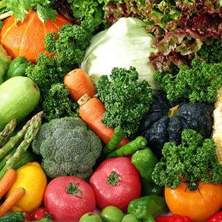 食材の豊富さと良質な素材